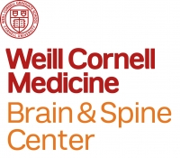 CORNELL LOGO_BRAIN SPINE_STACKED_10_08_RGB